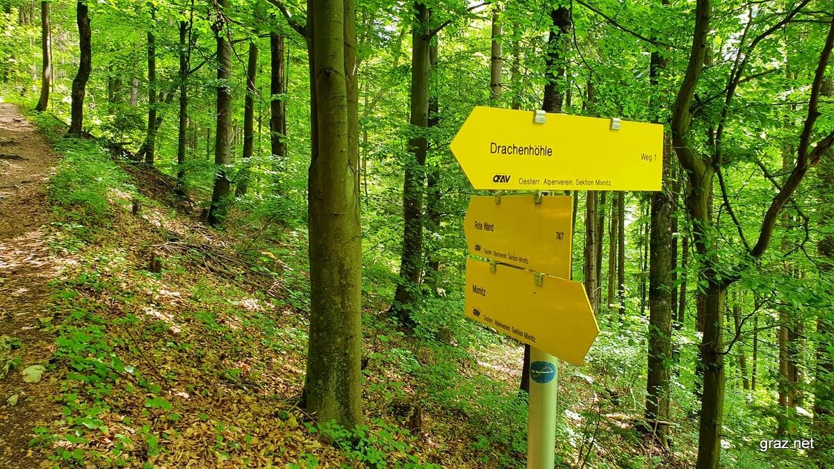drachenhoehle-mixnitz-wanderung_20