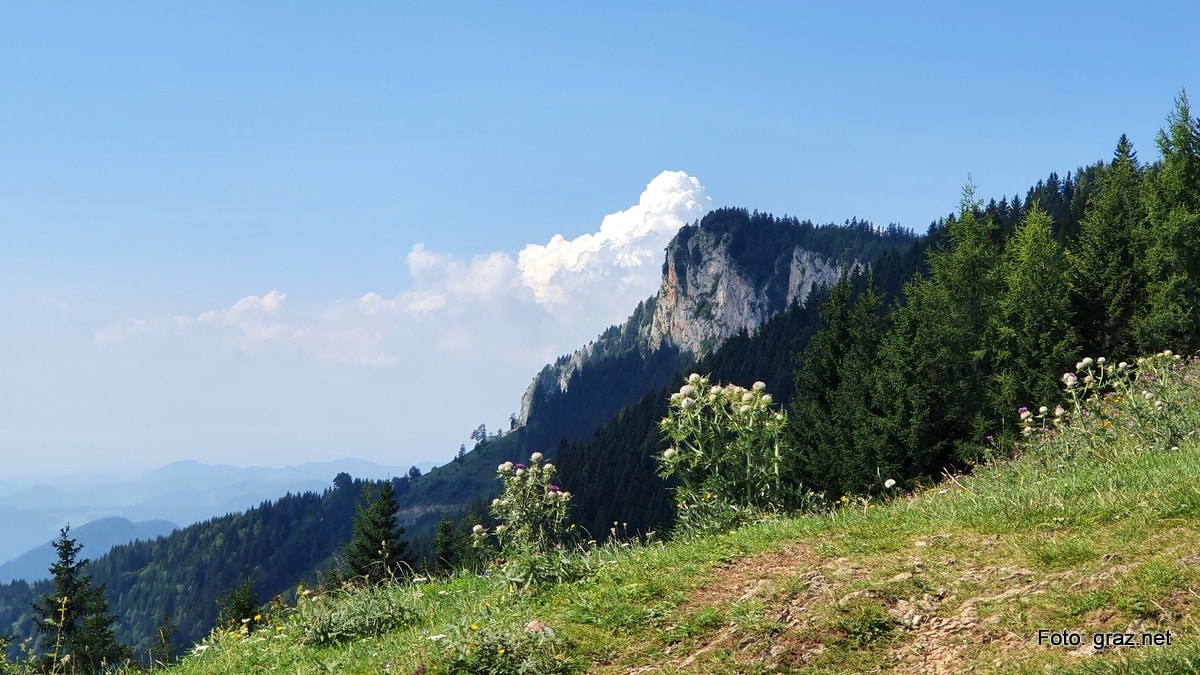 wanderung-rote-wand-tyrnauer-alm_10