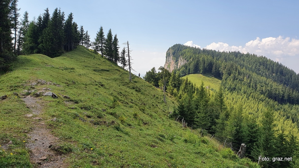 wanderung-rote-wand-tyrnauer-alm_12