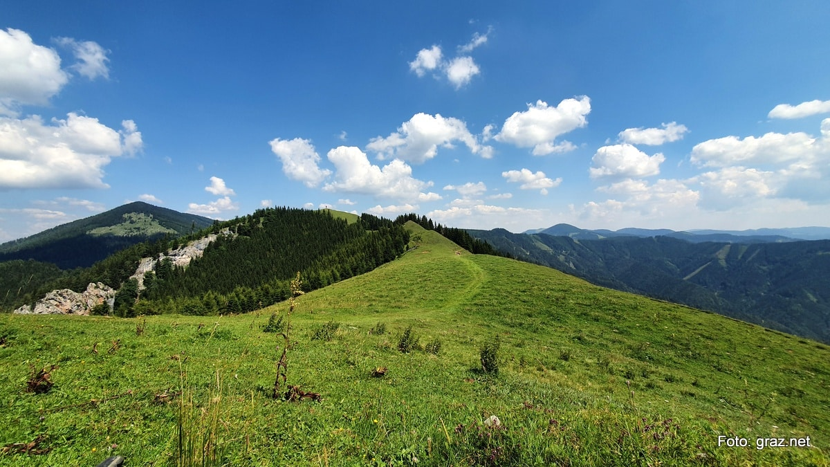 wanderung-rote-wand-tyrnauer-alm_18